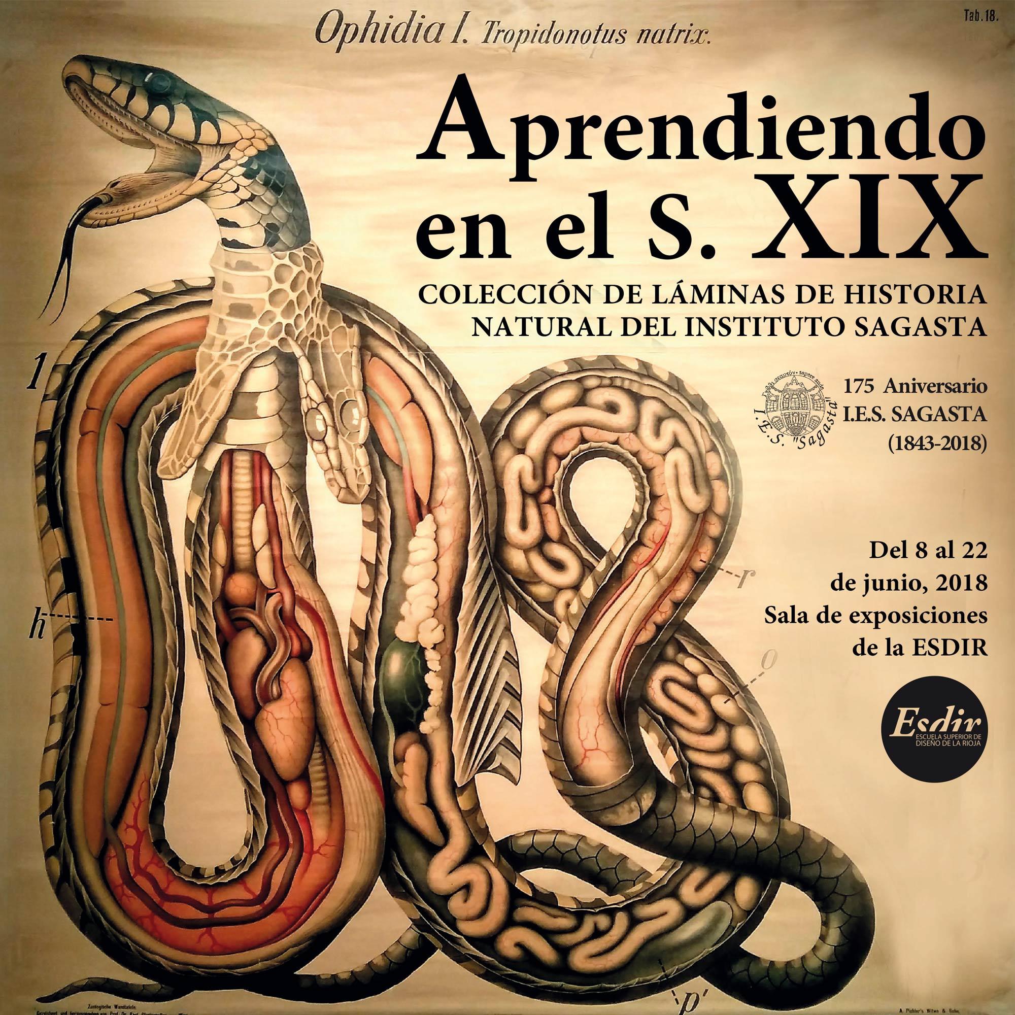 Exposición: Aprendiendo en el XIX. Colección de láminas del Sagasta.