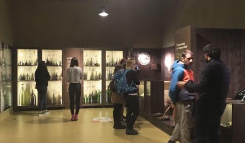 Introducción a la Cultura del Vino en el Museo Vivanco