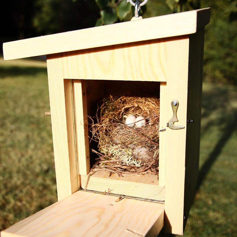 Conferencia casas para pájaros. Miércoles 10.15 h.