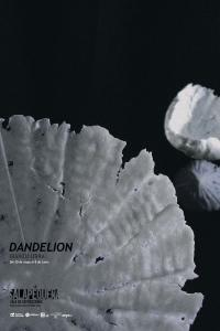 Dandelion. Iranzu Urra